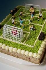 fotbalové hřiště 7